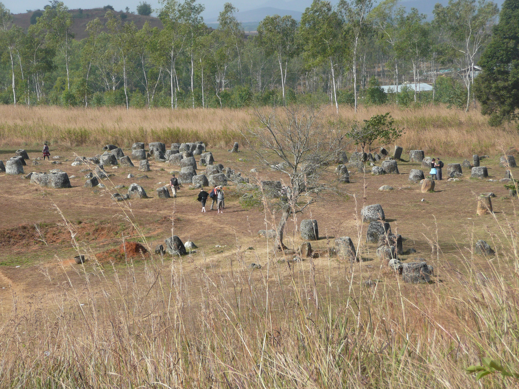Campia Vaselor de pe platoul Xiangkhoang1
