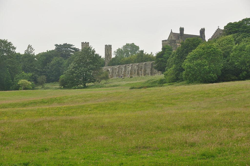 Campul de lupta de la Hastings