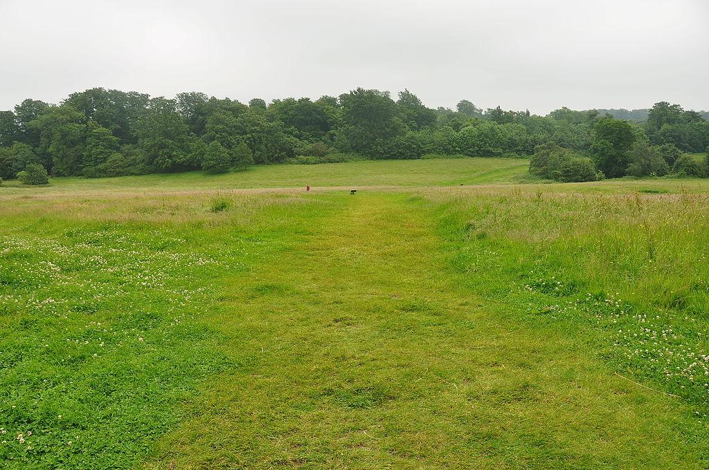 Campul de lupta de la Hastings1