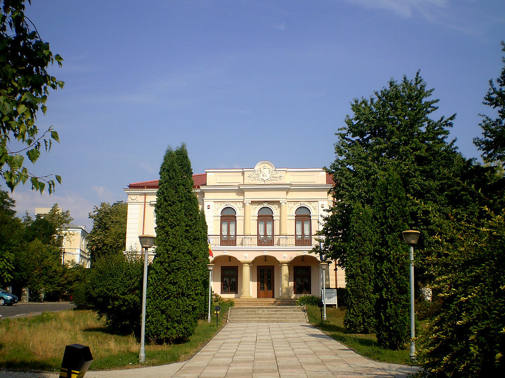 Casa Vasile Pogor12