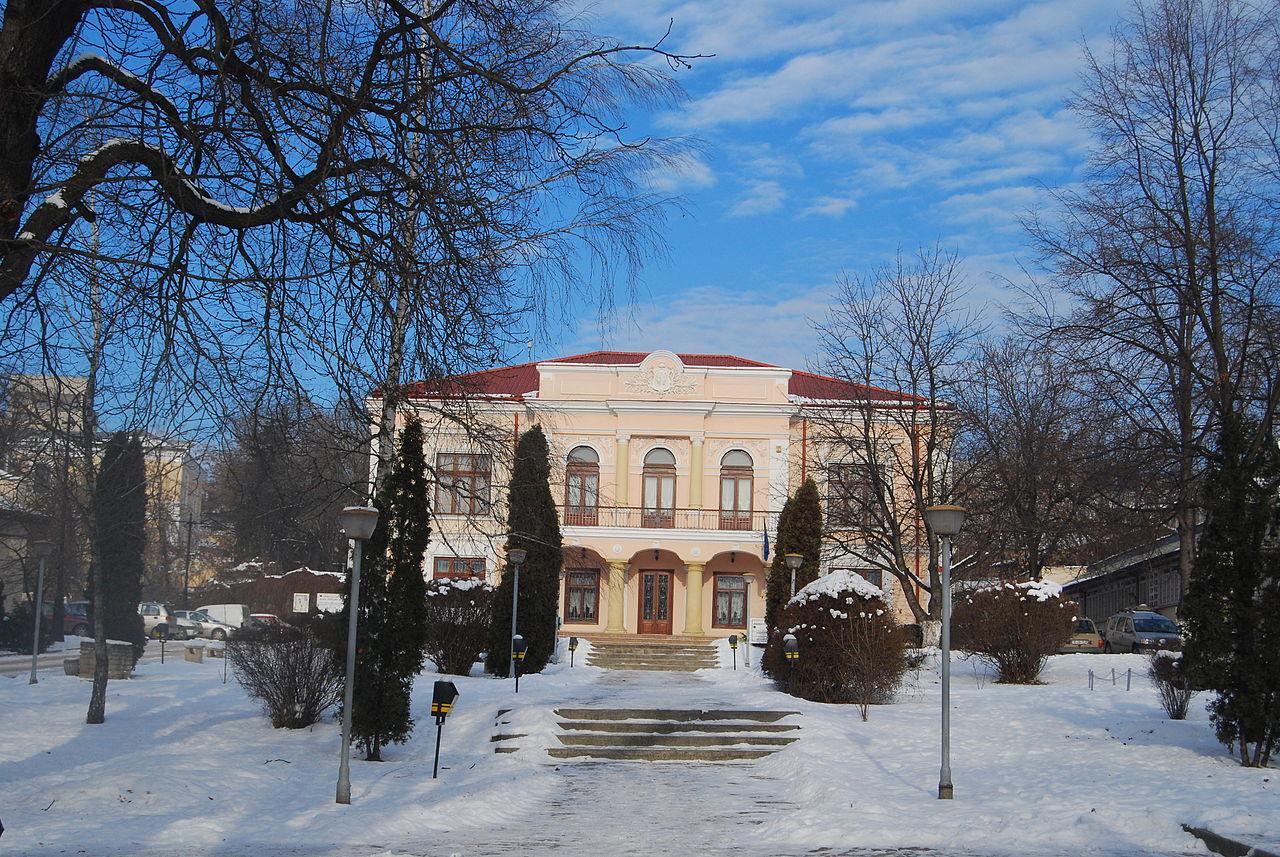 Casa Vasile Pogor123