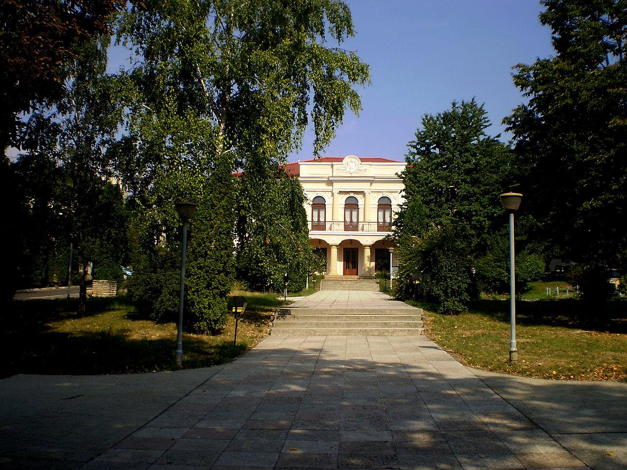 Casa Vasile Pogor1233
