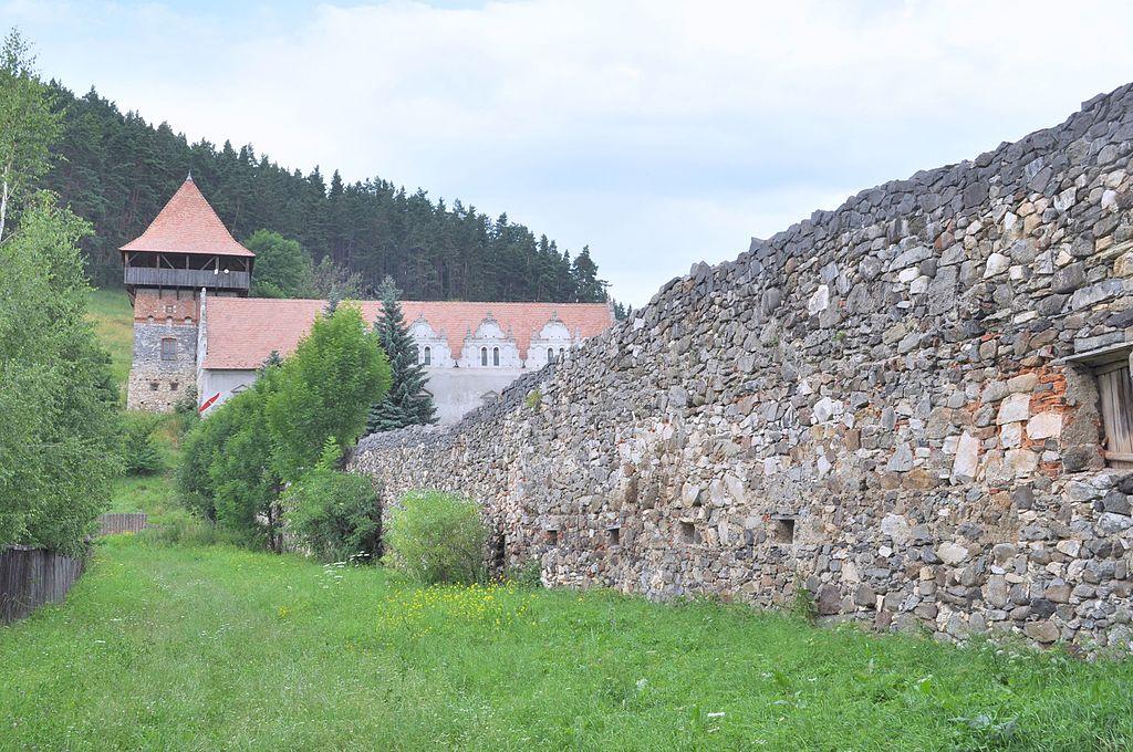Castelul Lazar1