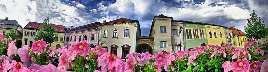 Centru Istoric Baia Mare1