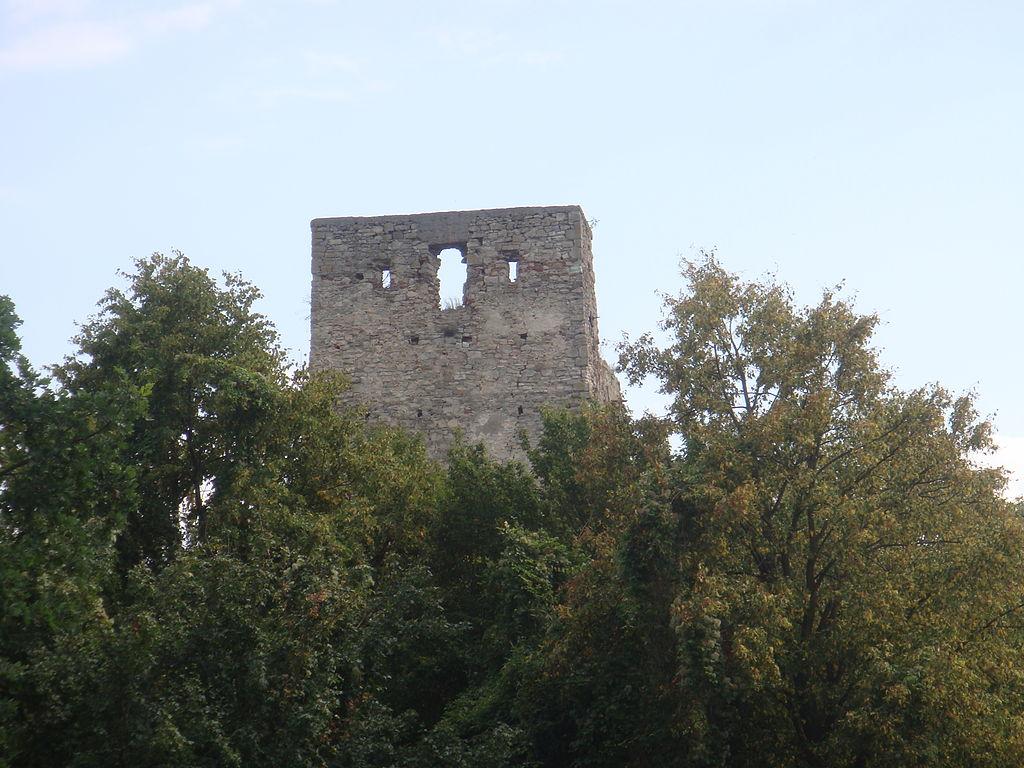 Cetatea Almăşului