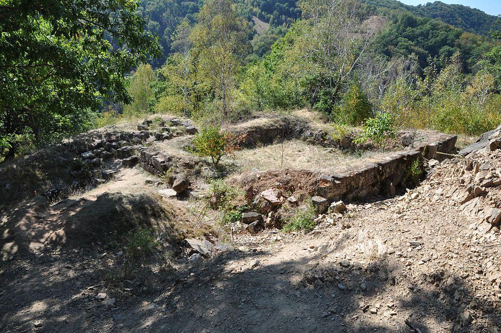 Cetatea Căpâlna111