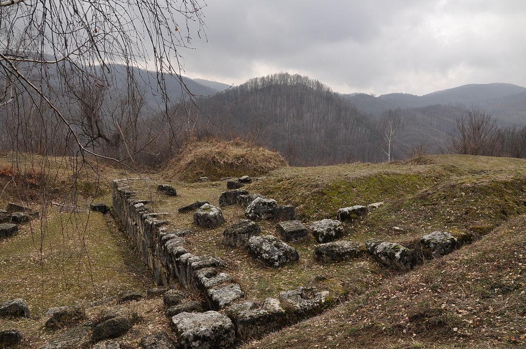 Cetatea Costeşti1
