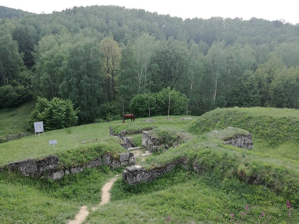 Cetatea Costesti11
