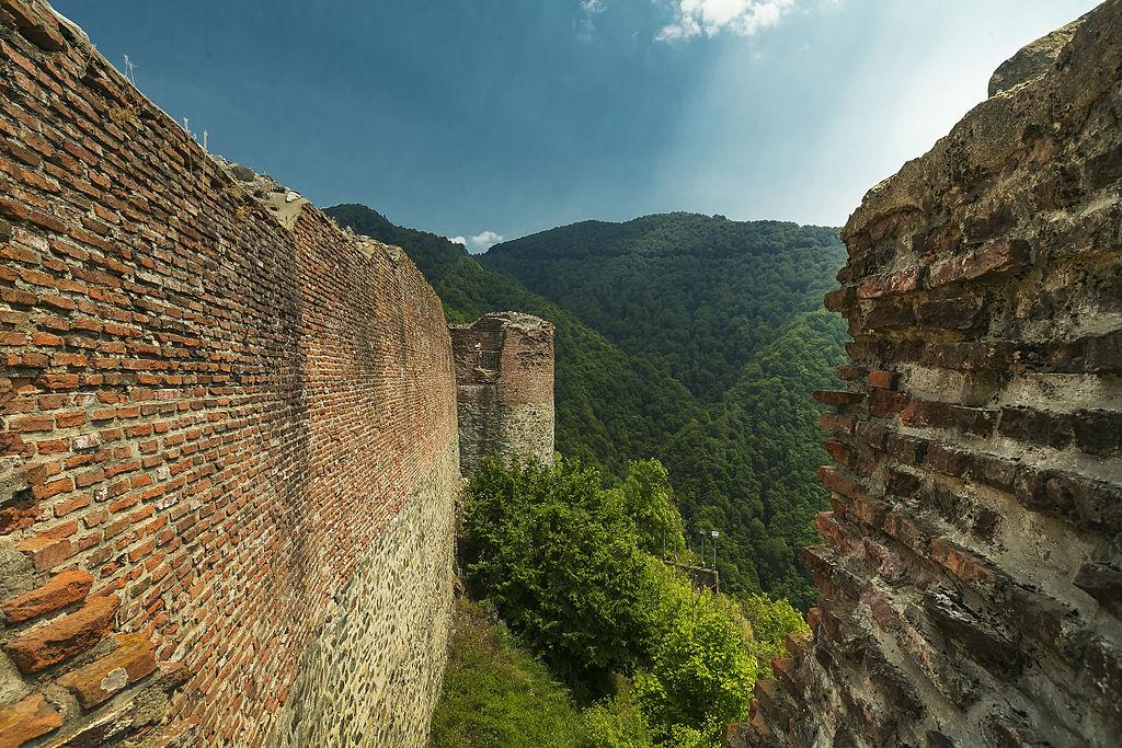 Cetatea Poenari1