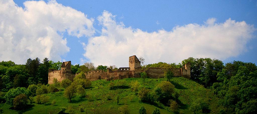 Cetatea Saschiz1