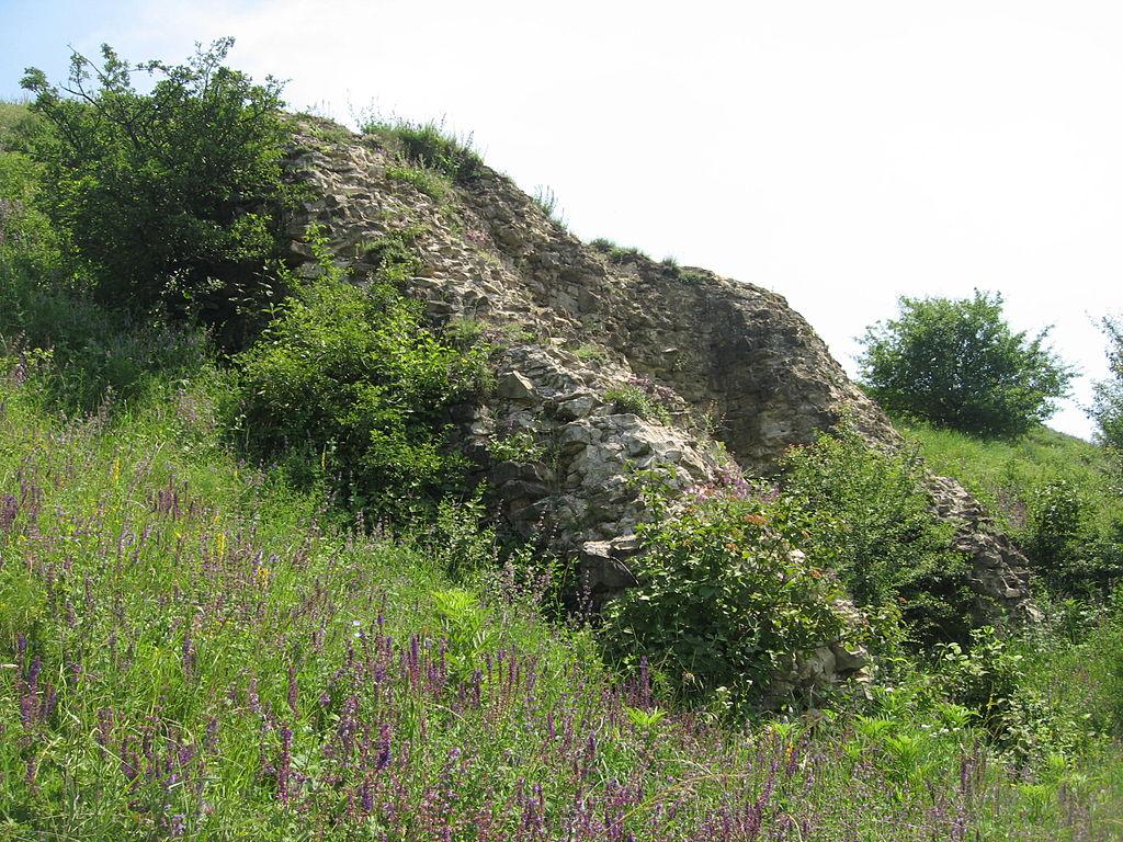 Cetatea Scheia1