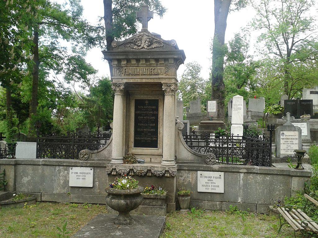 Cimitirul Hajongard111