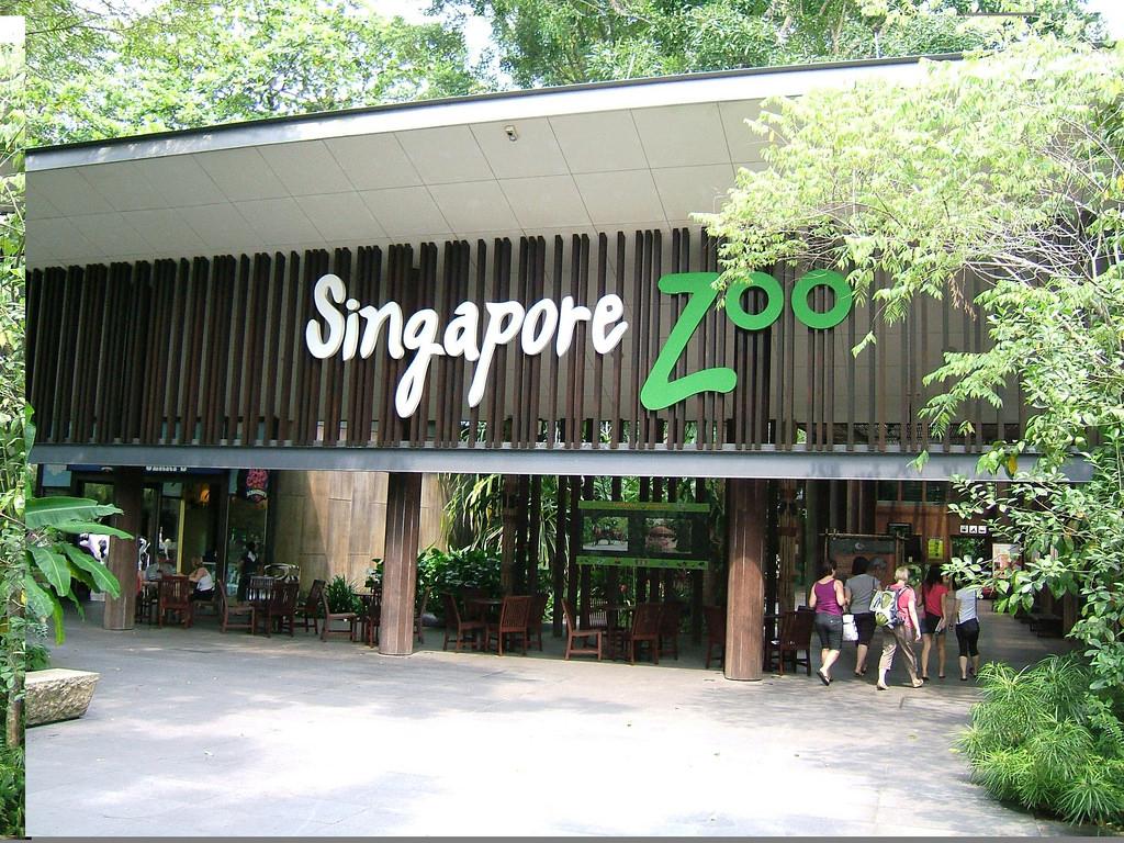 Gradina Zoologica Singapore