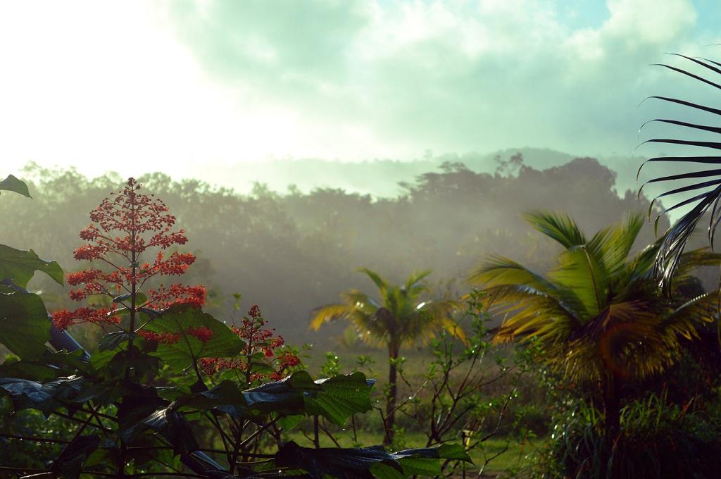 Guiana Franceza