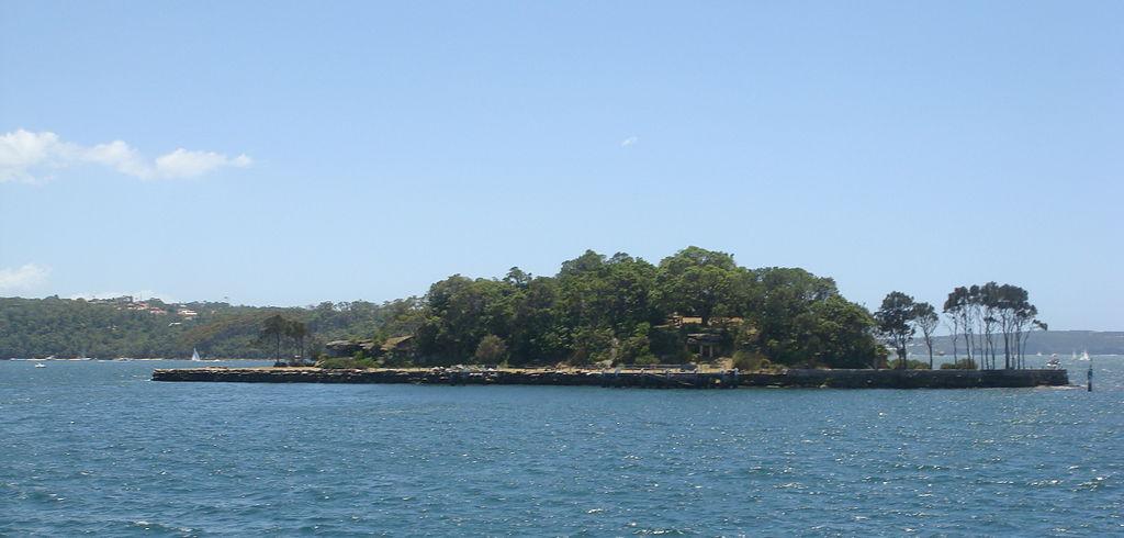 Insula Clark