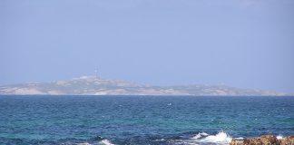 Insula Montague