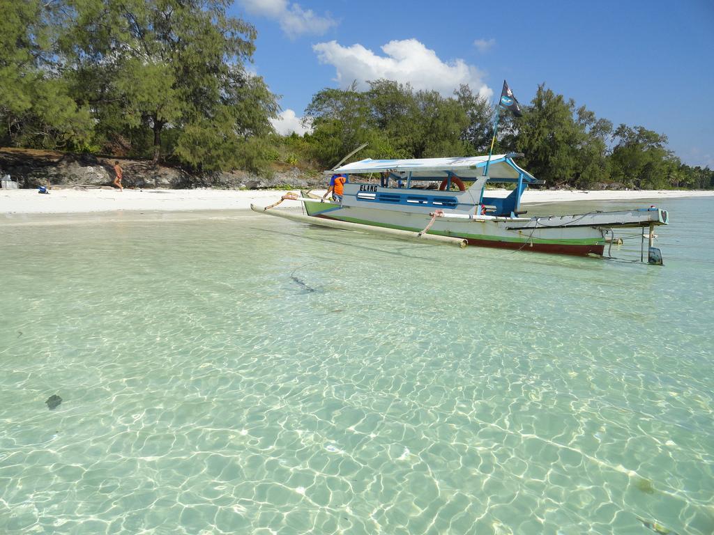 Insula Sulawesi