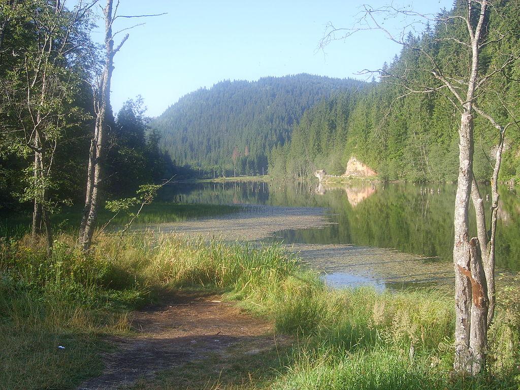 Lacul Rosu4