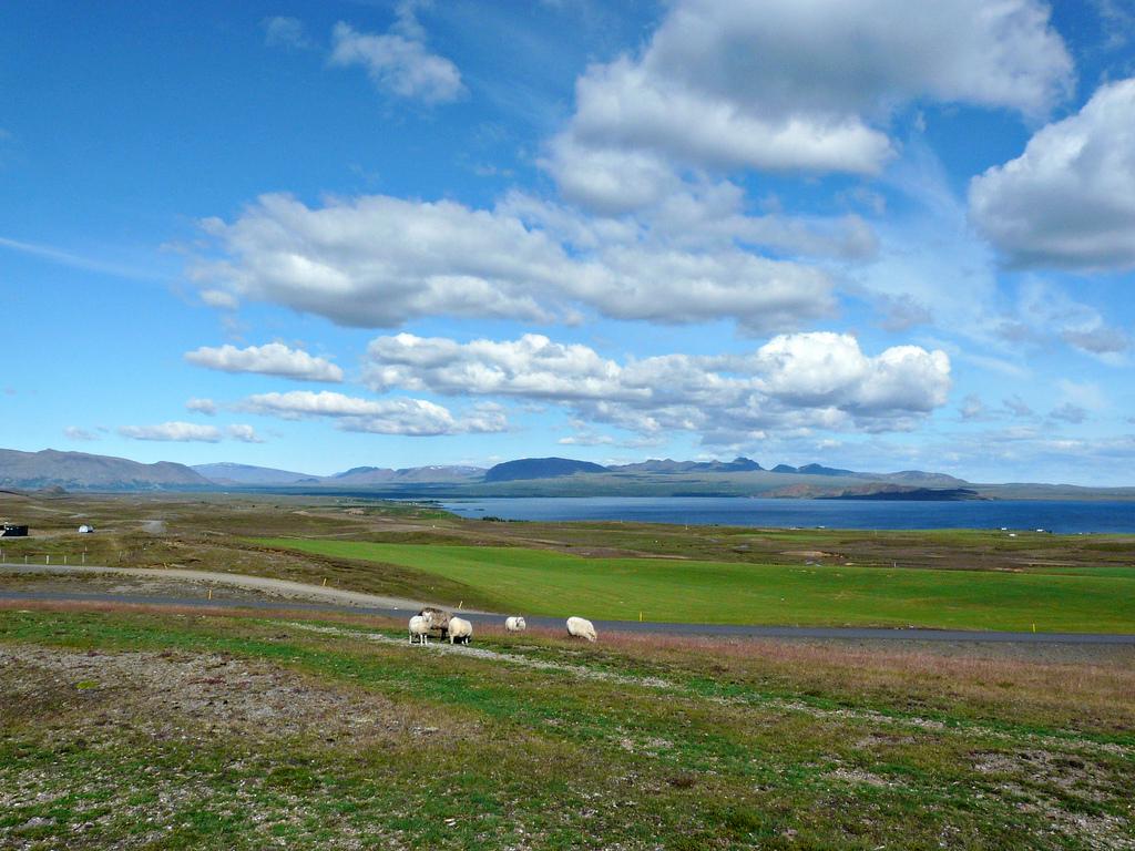 Lacul Thingvellir