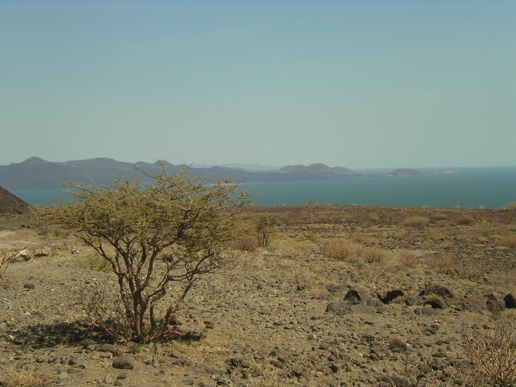 Lacul Turkana11