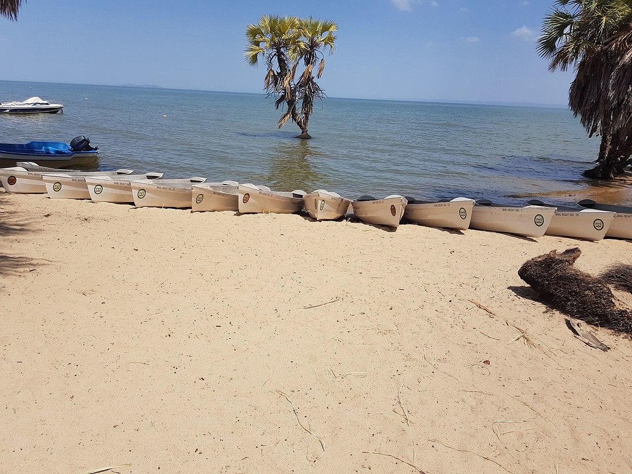 Lacul Turkana111