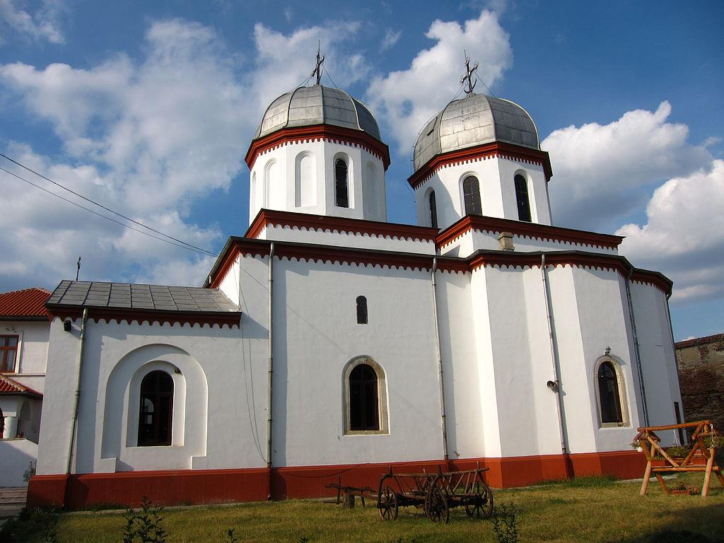 Mănăstirea Comana11