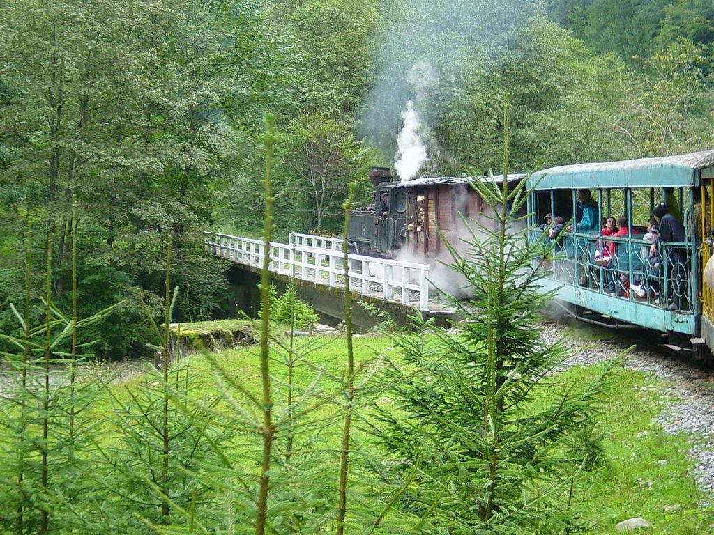Mocănița de pe Valea Vaserului11