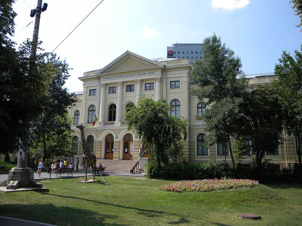 Muzeul de Istorie Naturală Grigore Antipa