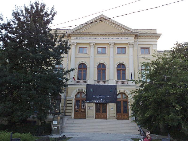 Muzeul de Istorie Naturală Grigore Antipa1