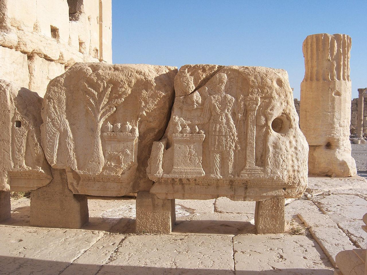 Orasul Palmira111