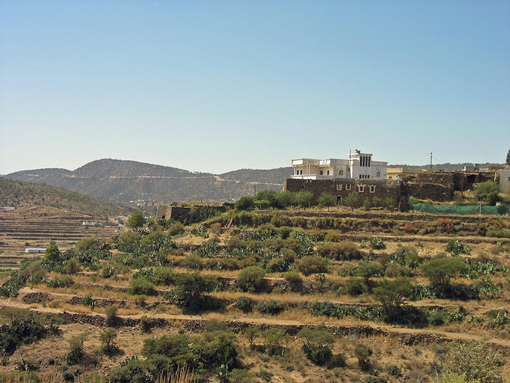 Palat Shadda