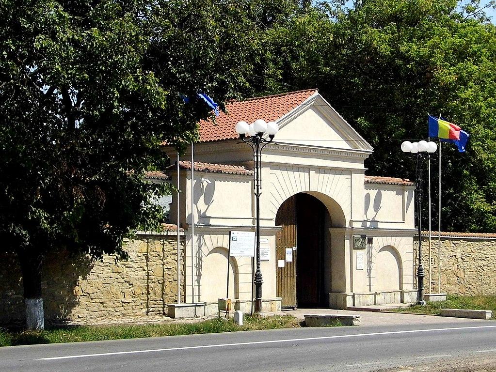 Palatul Cuza din Ruginoasa poarta de intrare