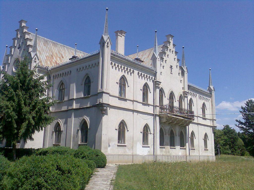 Palatul Cuza din Ruginoasa11