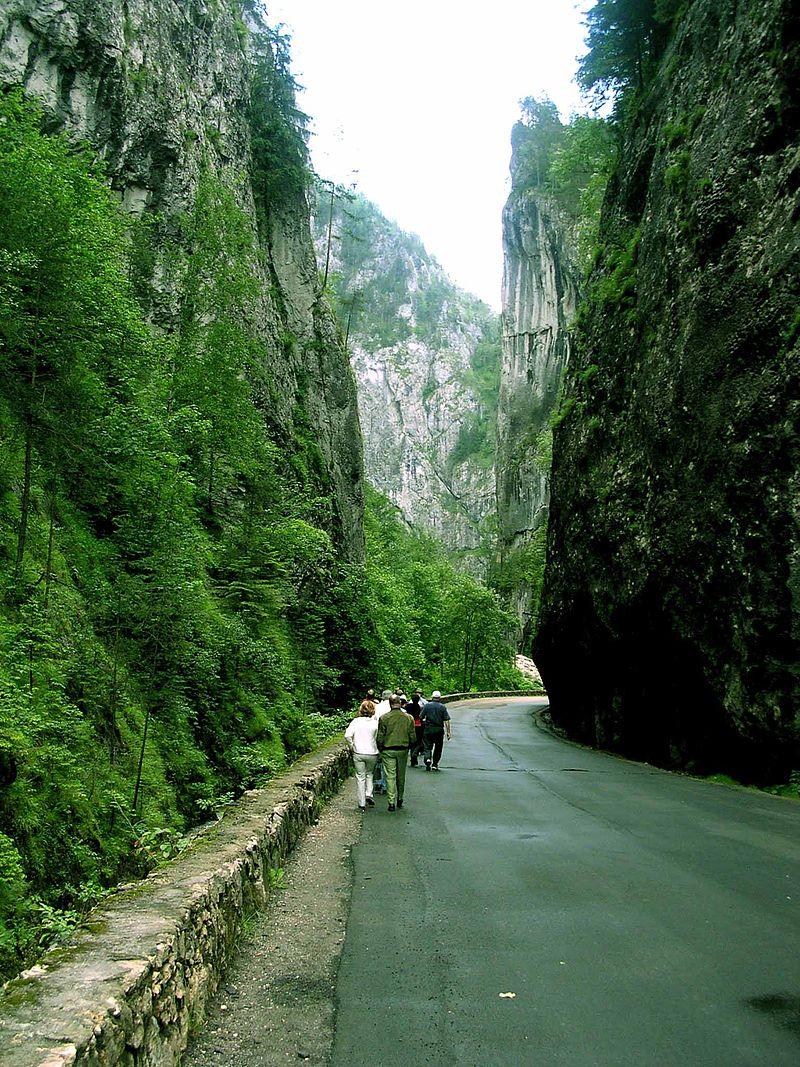 Parcul Național Cheile Bicazului – Hășmaș12