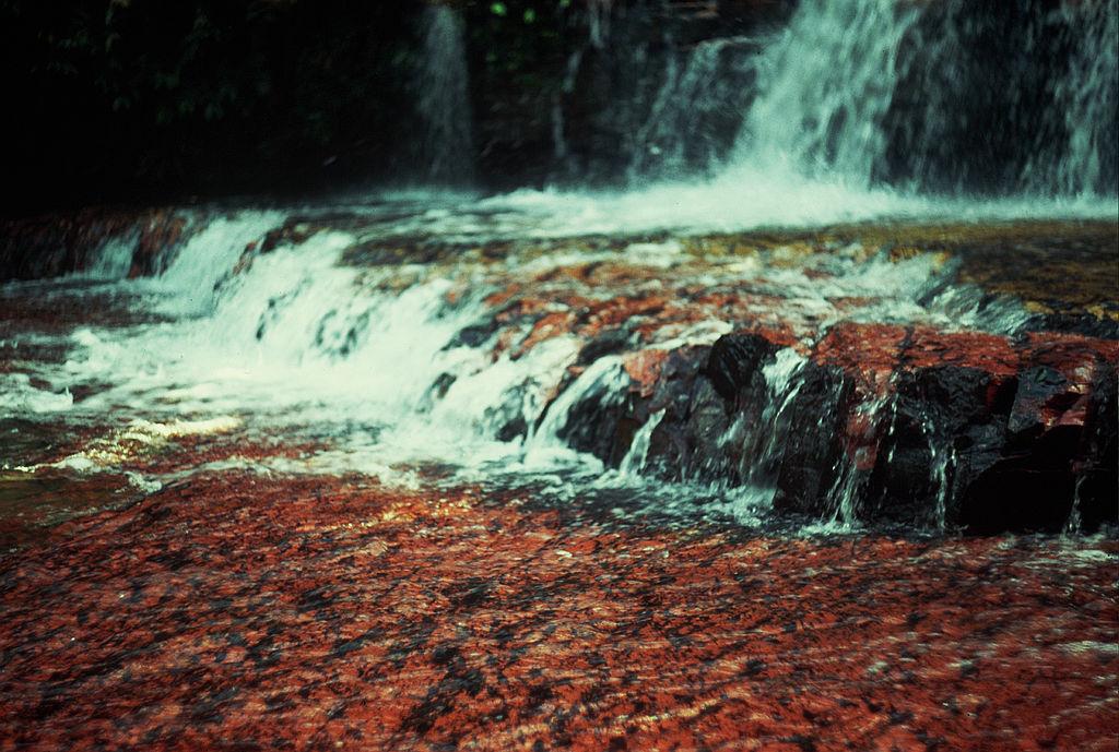 Parcul National Canaima Jasper Creek