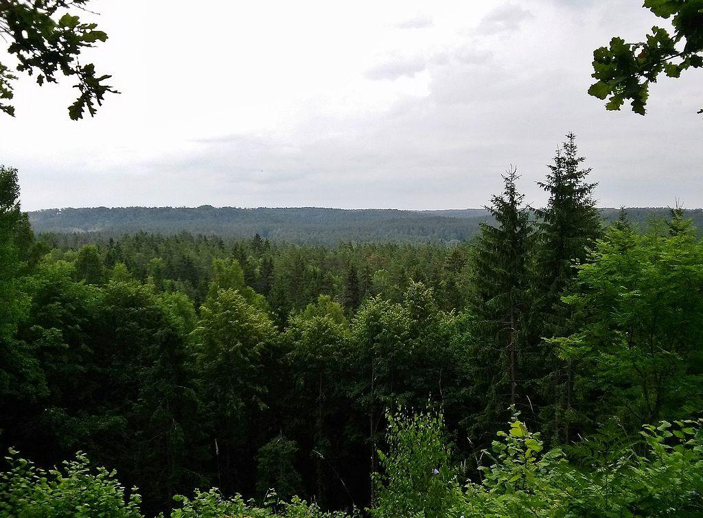 Parcul National Gauja
