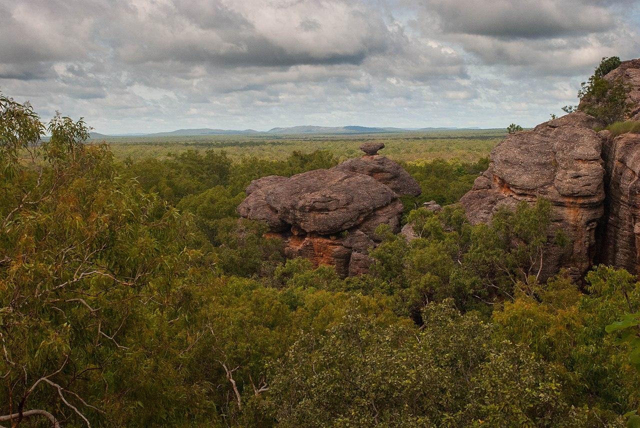 Parcul National Kakadu1