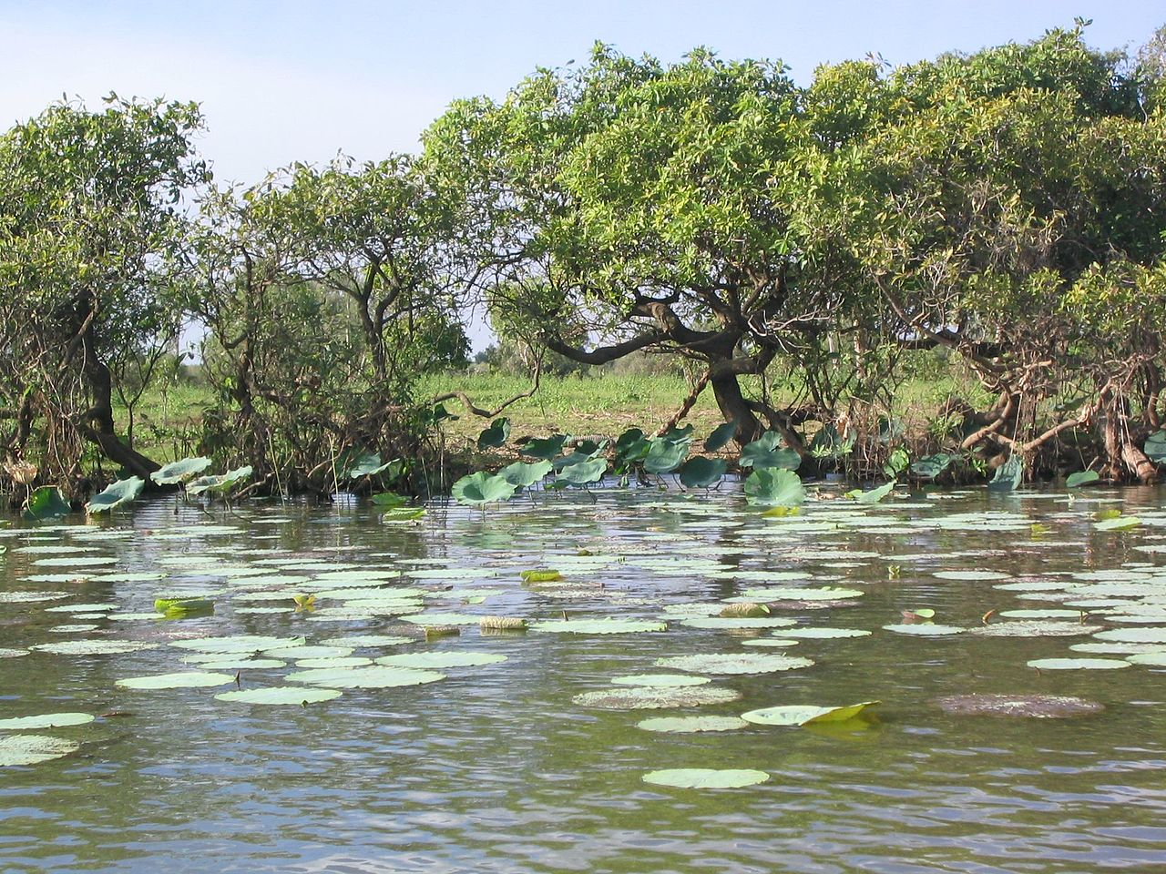 Parcul National Kakadu1111
