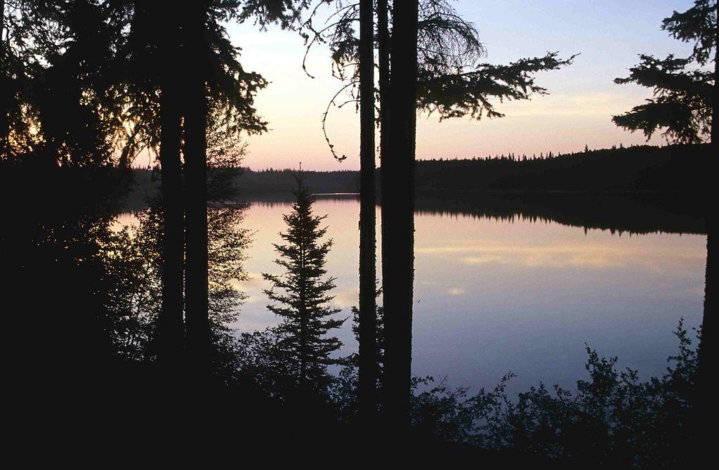 Parcul National Wood Buffalo11
