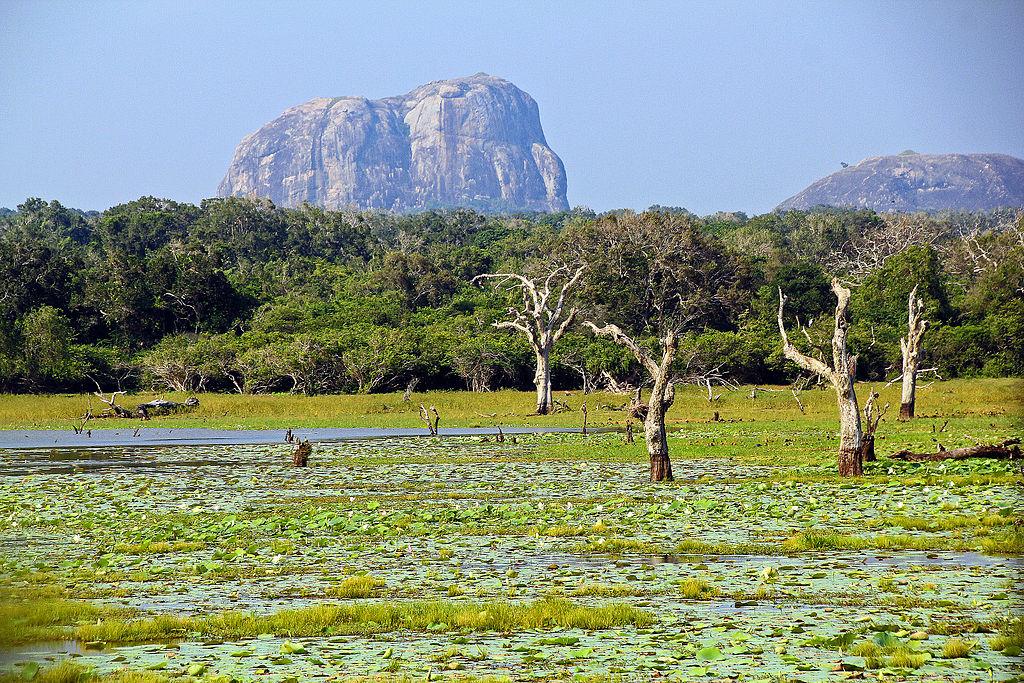Parcul National Yala
