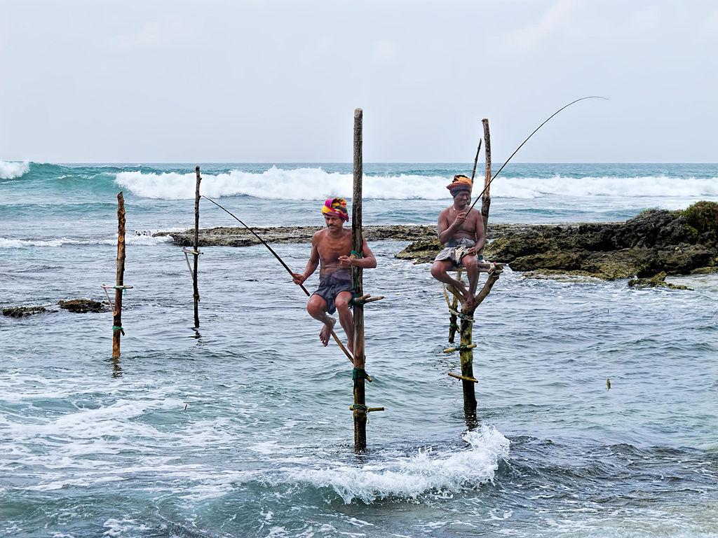 Pescuit pe stalpi Ahangama