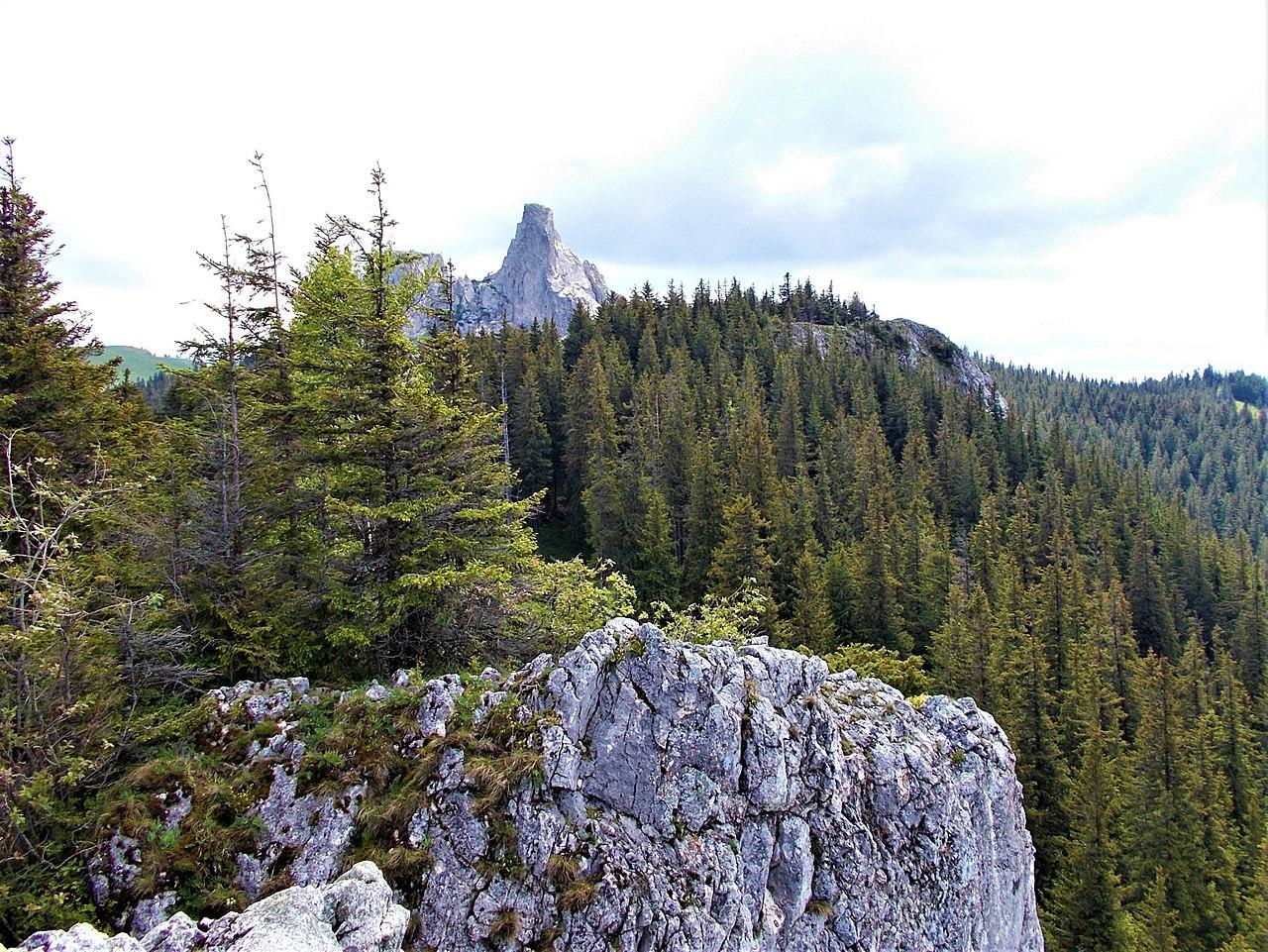 Rezervația naturală Pietrele Doamnei1