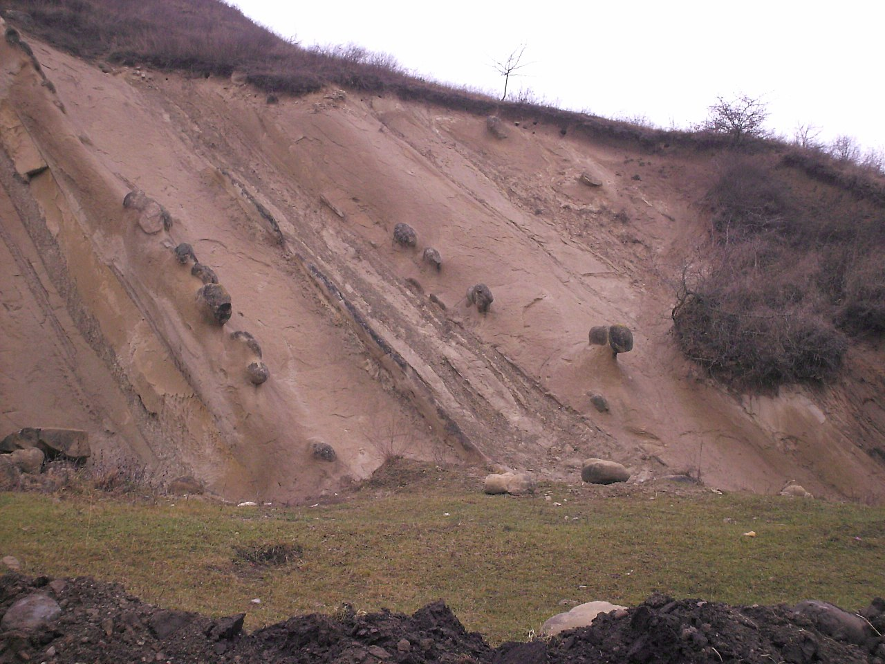 Rezervația naturală Râpa cu Păpuși