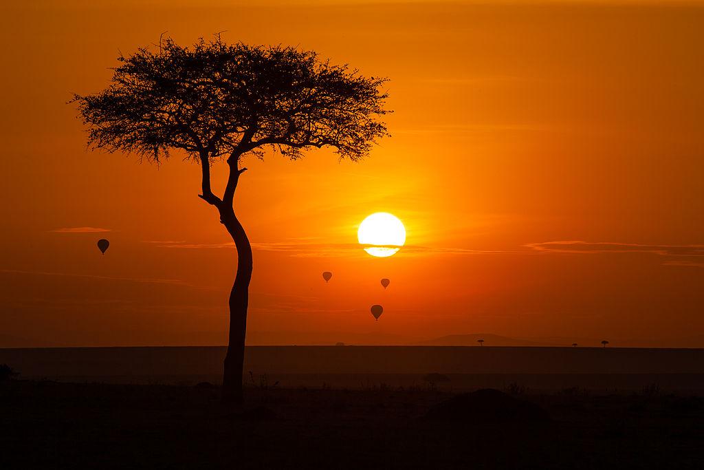 Rezervatia Nationala Masai Mara1