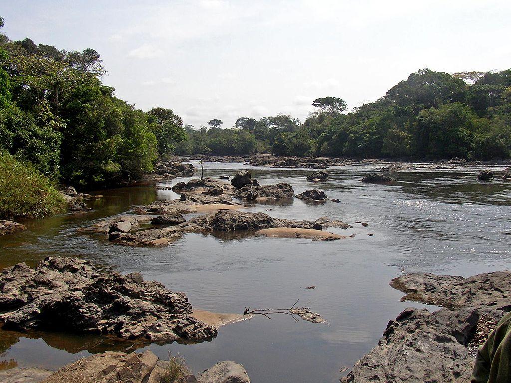 Rezervatia Okapi