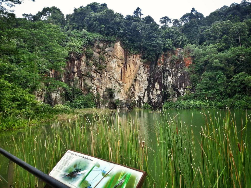 Rezervatia naturala Bukit Timah