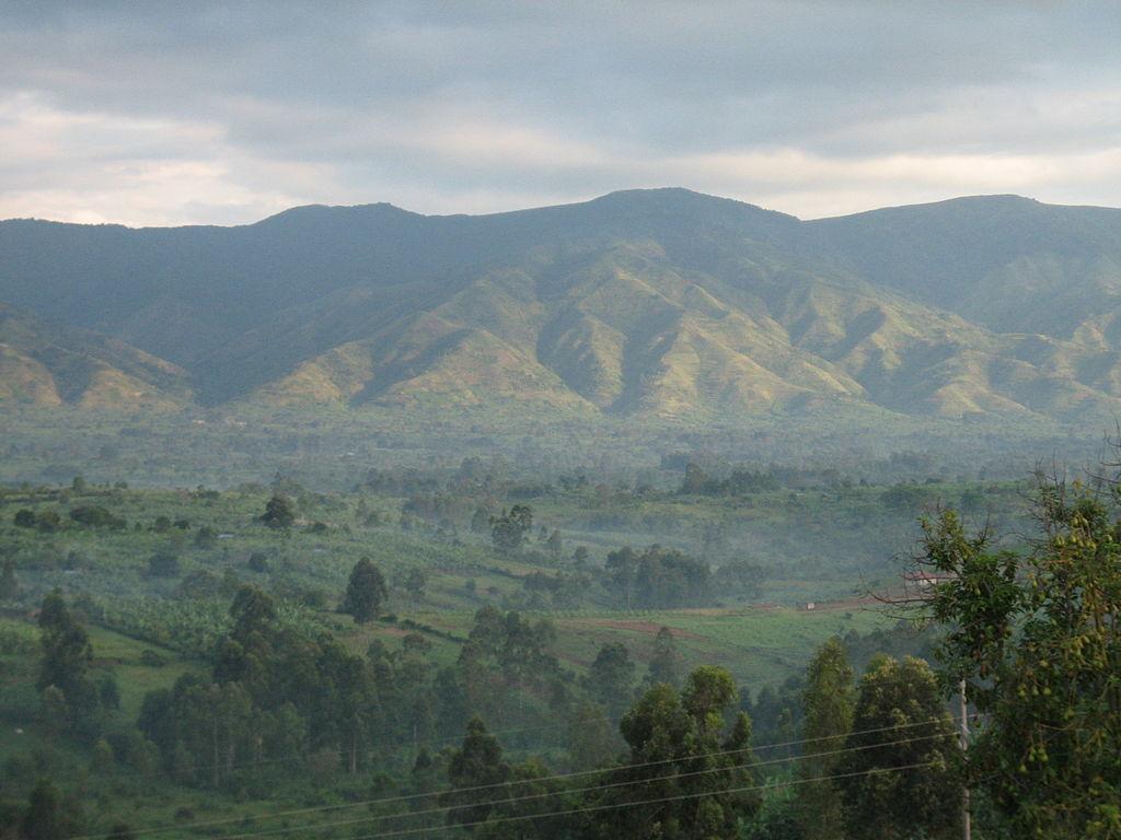Rwenzori