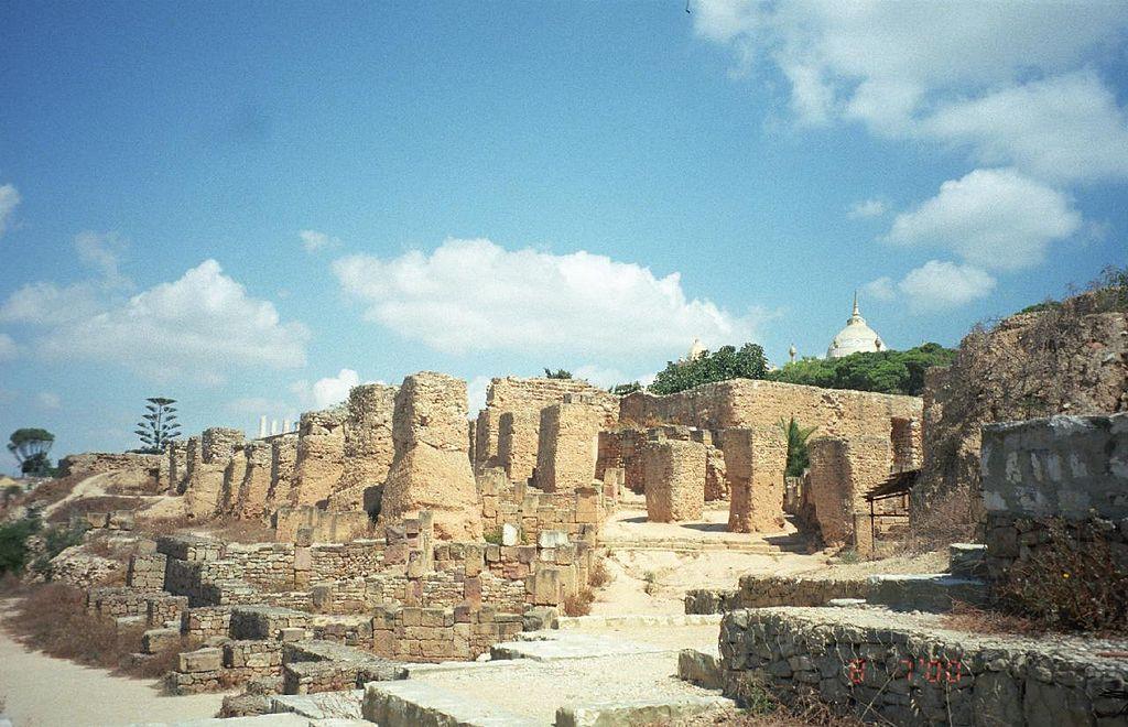 Situl arheologic Cartagina1