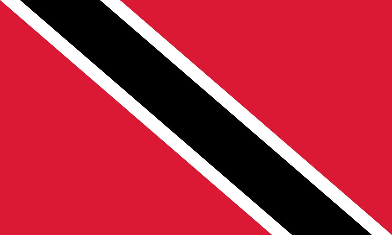 Trinidad Steag