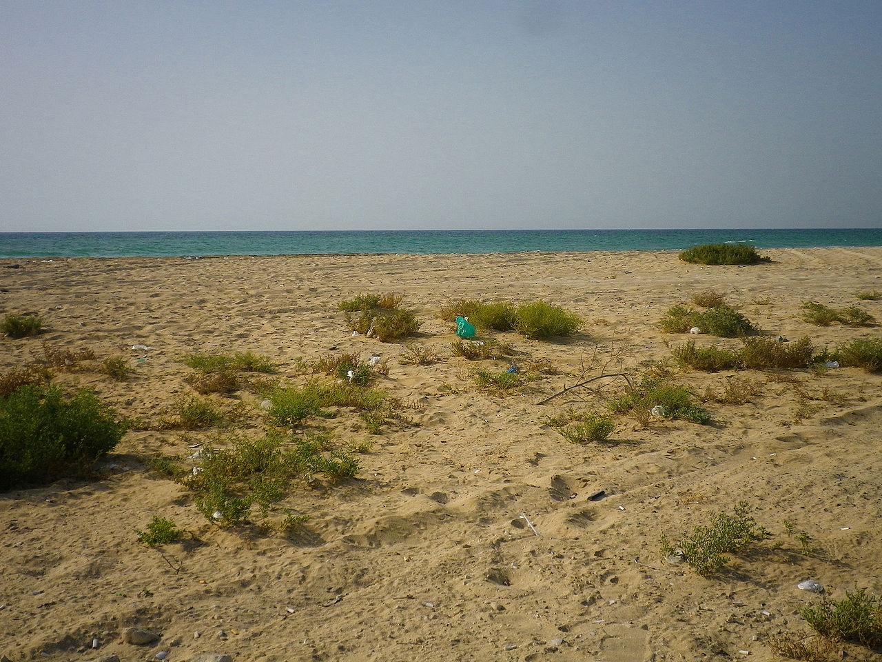 Umm Al-Qaiwain111